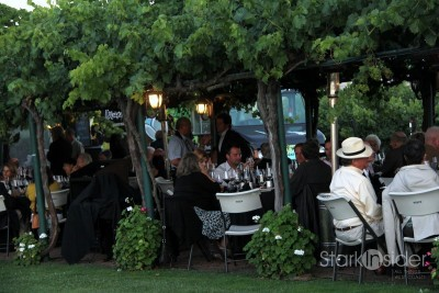 Dinner under the arbor (and grapes).