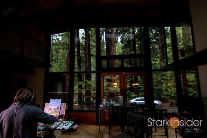 Magical Redwood Retreat - Sebastopol, Sonoma