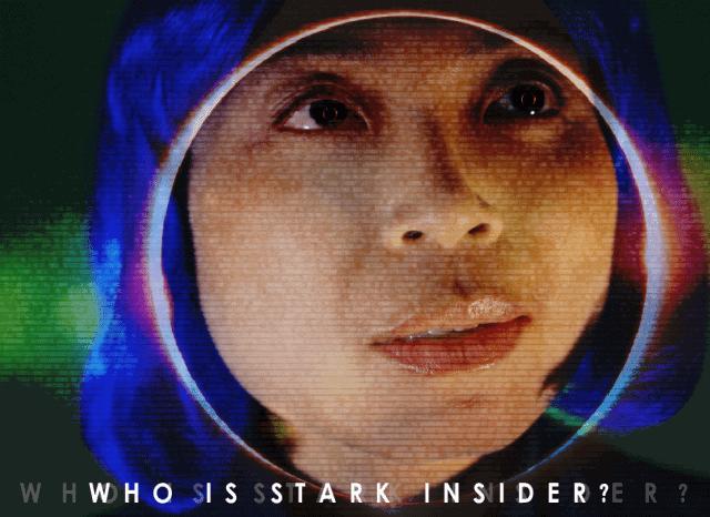 Loni Stark Bio - About Stark Insider